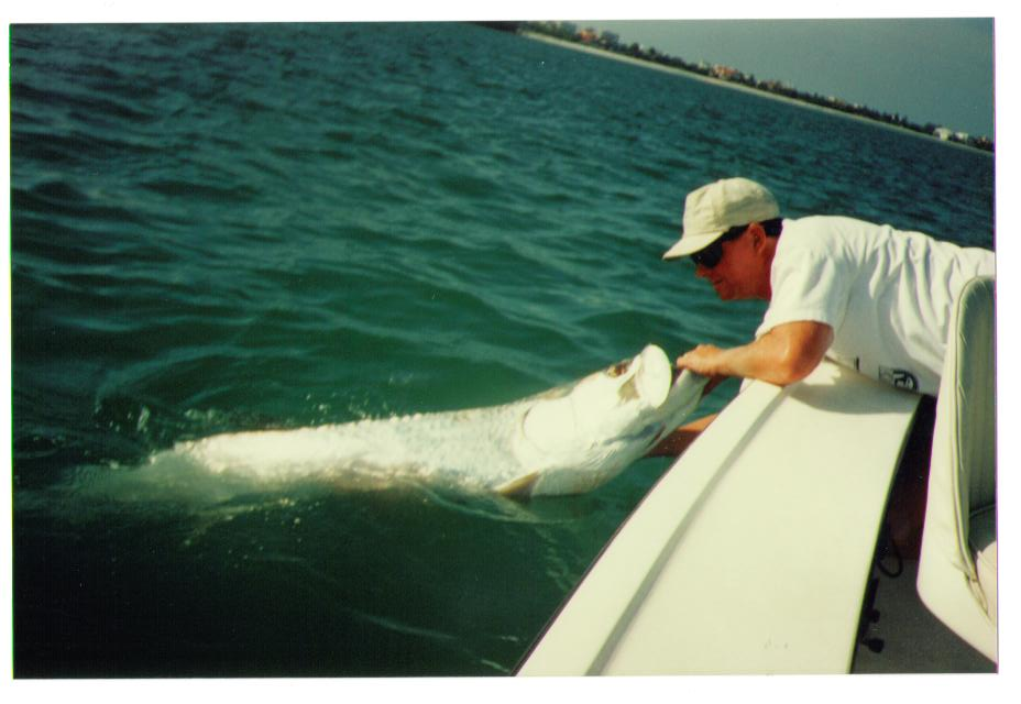 Other species light tackle and fly fishing charters in for Marco island fishing guides