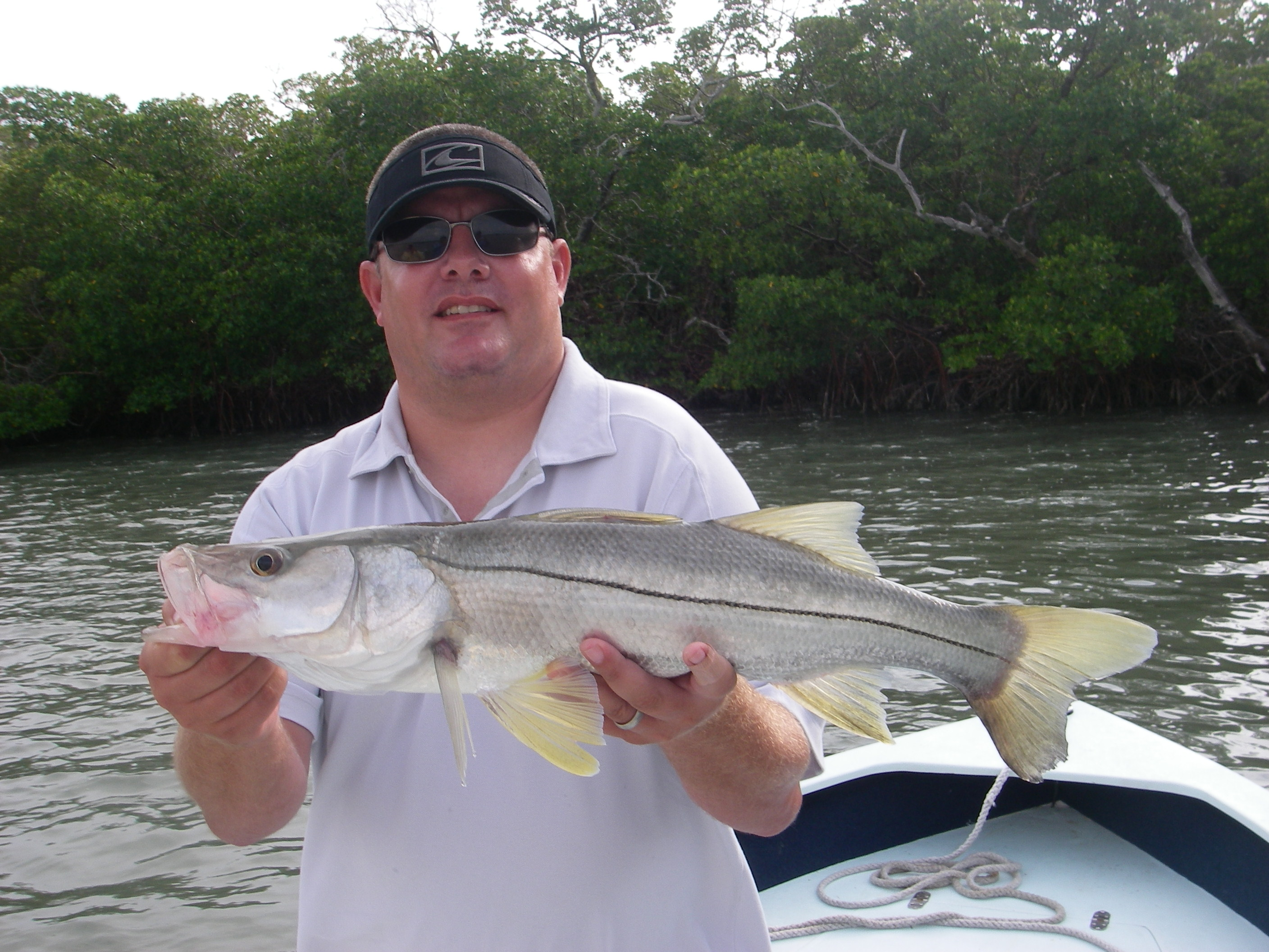 Naples Snook Fishing Light Tackle And Fly Fishing