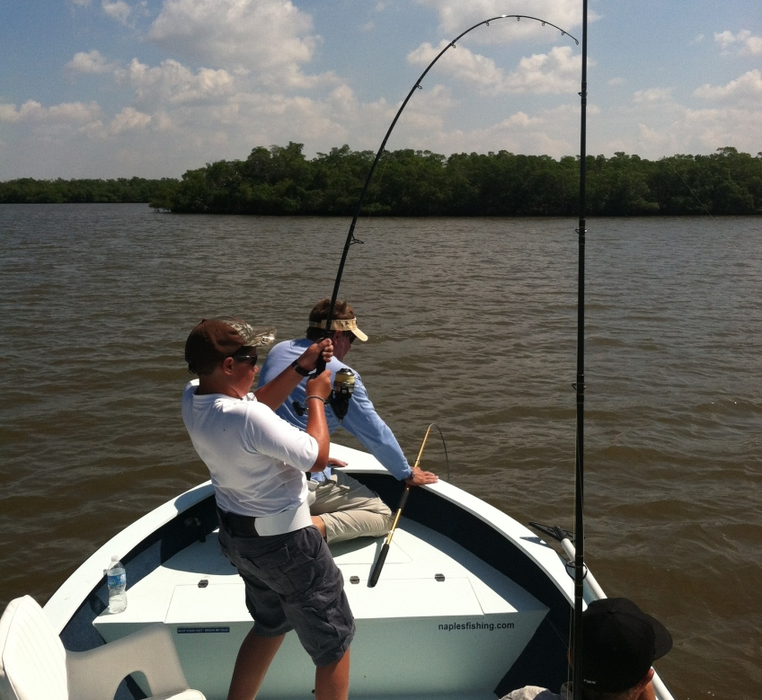Photo 11 copy light tackle and fly fishing charters for Charter fishing marco island