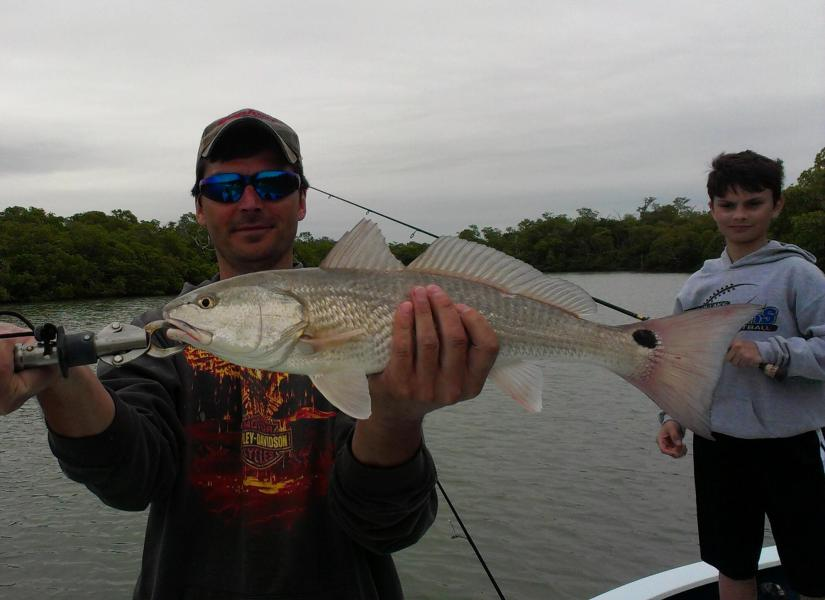 A nice redfish comes aboard while fishing with Capt. Ben Geroy on 1/1/2013