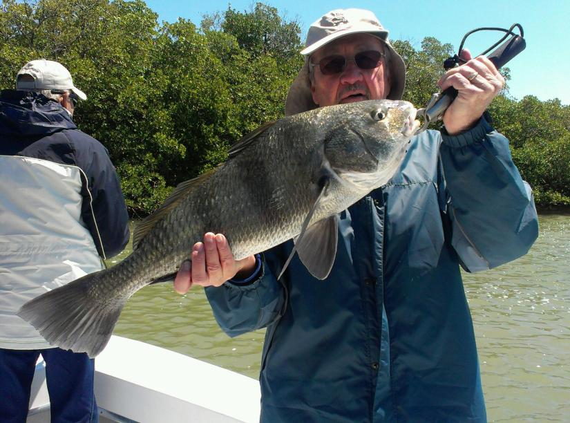 A hefty black drum caught by George Bariso