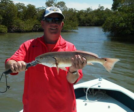 Tim Gill wih a nice back country redfish 3/14/13