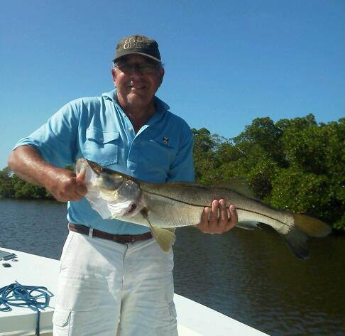 September snook