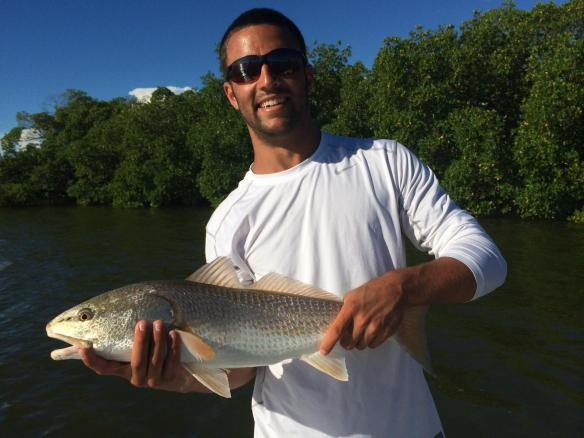 Cody cast way into a tiny mangrove pocket at high tide to produce this nice redfish.