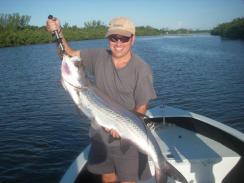 channel tarpon