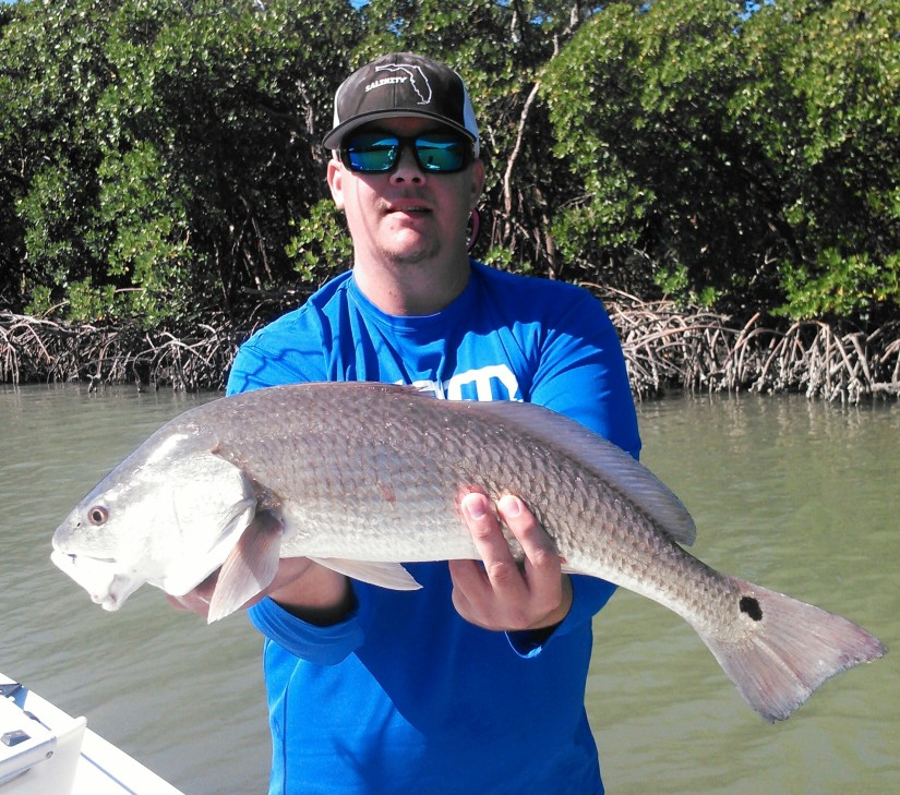 Matt Geroy with a nice redfish released during the RedSnook catch and release tournament.