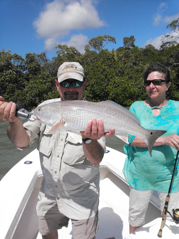 Steve and Linda had an all out slay fest with big redfish, snook and large jack crevalle on 3/5/2015