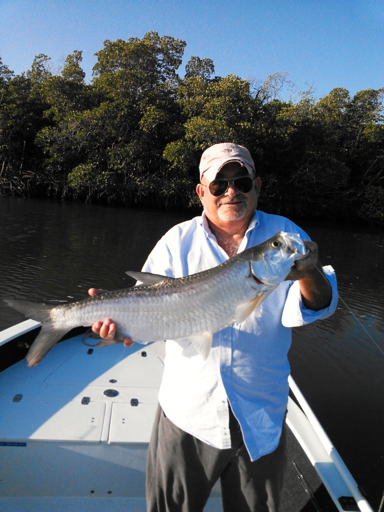 Mike D. with a nice juvenile tarpon released on a trip last week.