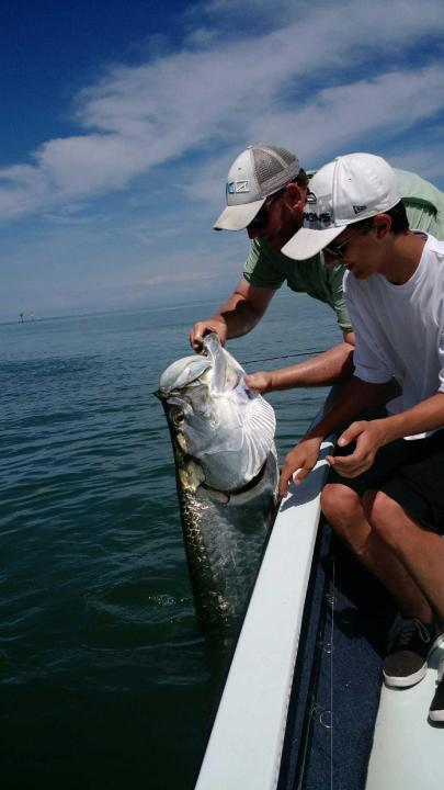 This nice tarpon was released on a recent trip with Capt. Ben Geroy