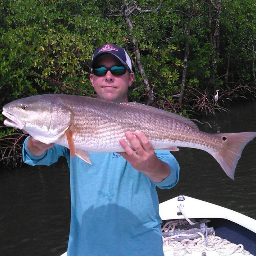 harper redfish